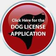 dog button license