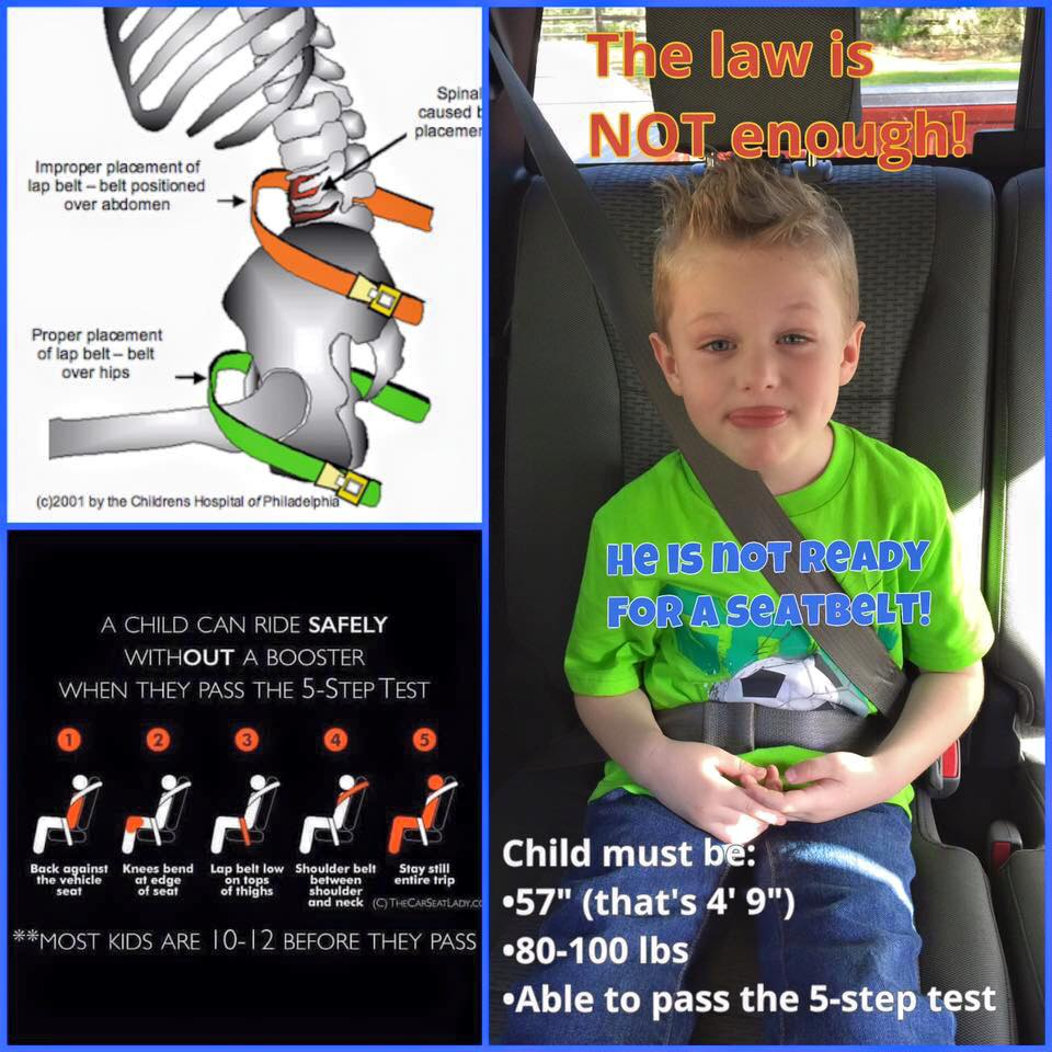 Car Seat Infographic 1