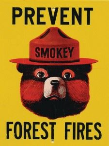 Prevent Forest Fires with Smokey the Bear